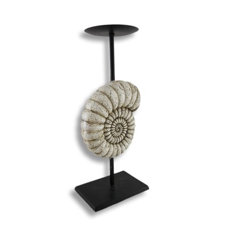 Ammonite Nautilus Shell Piller Candle Holder Stand