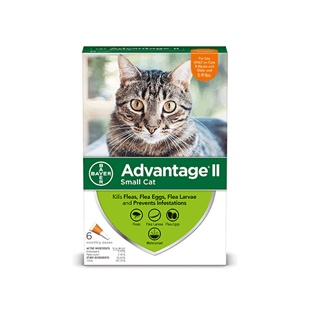Advantage II Flea Prevention for Small Cats, 6 Monthly