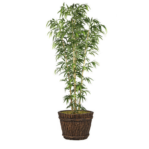 "80"" Bamboo Tree Artificial Faux Contemporary In Natural Poles In Planter By Minx NY"