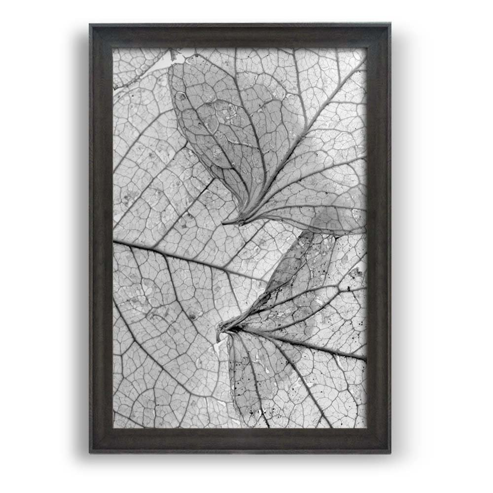 """wall26 - Framed Wall Art Prints - Closeup of Leaves - Modern Home Decoration. Ready to Hang - Dark Coffee Brown Frame - 16""""x24"""""""