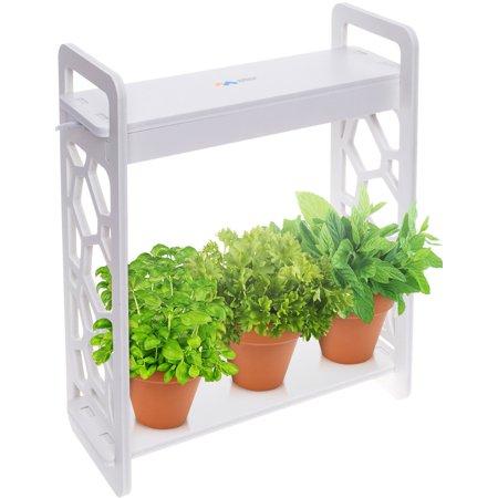 Mindful Design NEW LED Indoor At Home Mini Planter Herb Garden Kit with Timer Herb Garden Indoors