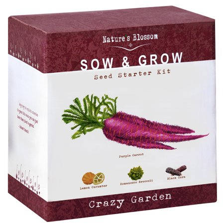 Exotic Vegetables Growing Kit - 5 Unique Plants to Grow From Seed: Purple Carrots, Blue Corn, Yellow Cucumber, Rainbow Chard & Broccoli. Garden Gift for Children - Fun Gardening Set For Boys & Girls