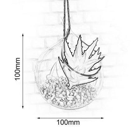 Brand New Wall hanging Vase for hydroponics Plants goldfish bowl vase Styled Decor - image 2 de 7