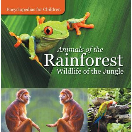 Wild Jungle - Animals of the Rainforest | Wildlife of the Jungle | Encyclopedias for Children - eBook