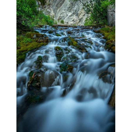 Creek flowing over moss covered rocks, Grassi Lakes Creek, Canmore, Alberta, Canada Print Wall Art
