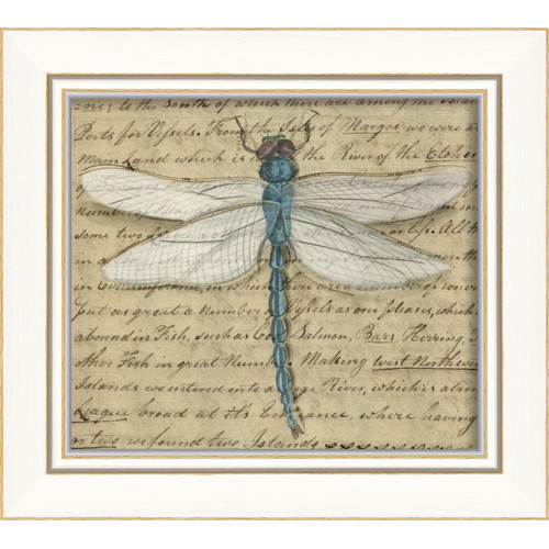 The Artwork Factory Dragonfly Framed Graphic Art