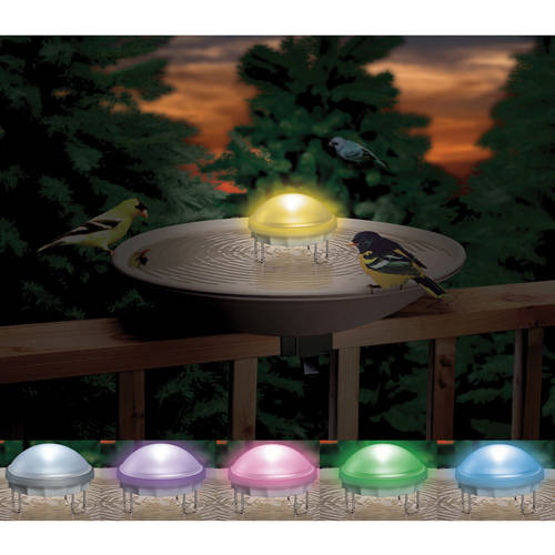 Aurora Lighted Water Wiggler