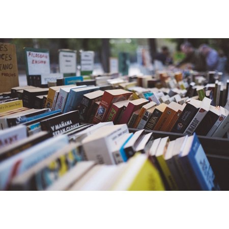 Multi Bookshop (LAMINATED POSTER Books Collection Bookstore Rows Bookshop Arranged Poster Print 24 x)
