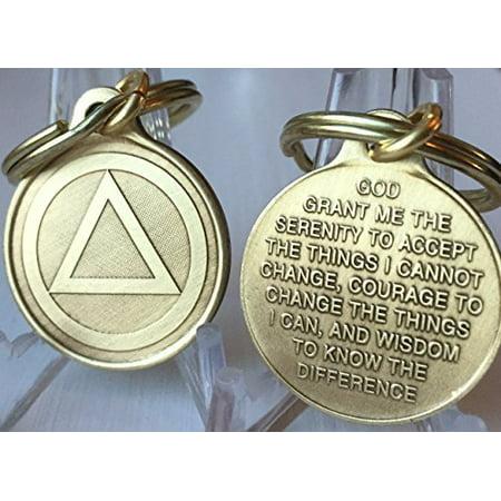"Circle Triangle AA Key Chain 1"" Bronze Alcoholics Anonymous Key Tag Charm - image 1 of 1"