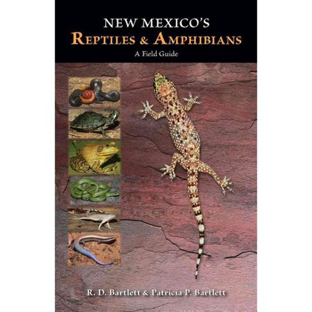 New Mexicos Reptiles And Amphibians  A Field Guide