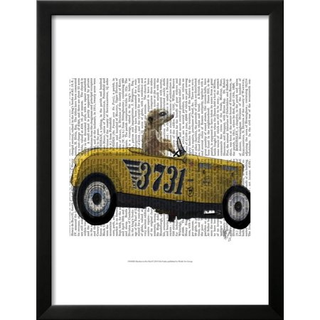 Meerkat in Hot Rod Framed Print Wall Art By Fab Funky - Walmart.com