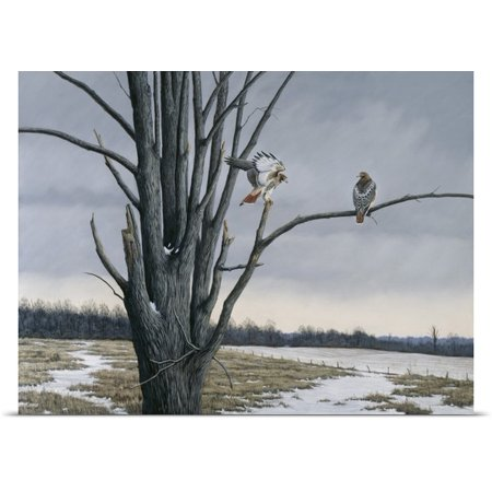Great Big Canvas Wilhelm Goebel Poster Print Entitled Old Elm And Redtails