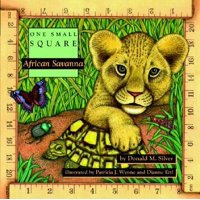 One Small Square: African Savanna (Paperback)