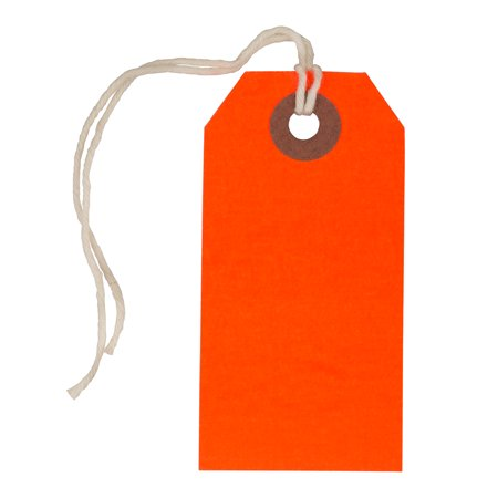JAM Gift Tags with String, Neon Red, 10/Pack, Small, 3 1/4 x 1 5/8 JAM Paper Gift Tags with String are the perfect finishing touch to any gift. These medium tags are made of smooth-finish cardstock and include a white string for clean presentation. Tags are blank on the front and back for you to personalize! Perfect for any occasion - sign off on a present from Santa Claus or write a note of congratulations on a graduation gift. These tags are available in a variety of sizes, including mini, small, medium and large. An array of colors available ensure we have the perfect shade to suit your gift's recipient.