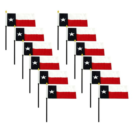Texas flag 4 x 6 inch - 12 PK](Halloween Six Flags Fiesta Texas)