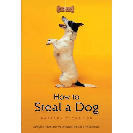 How to Steal a Dog : A Novel - How Does Glow In The Dark Work