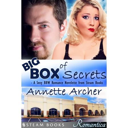 Big Box of Secrets - A Sexy BBW Romance Novelette from Steam Books -