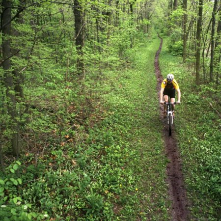 Mountain Biker on the Erie Canal Trail, Defiance, Ohio, USA Print Wall Art By Chuck