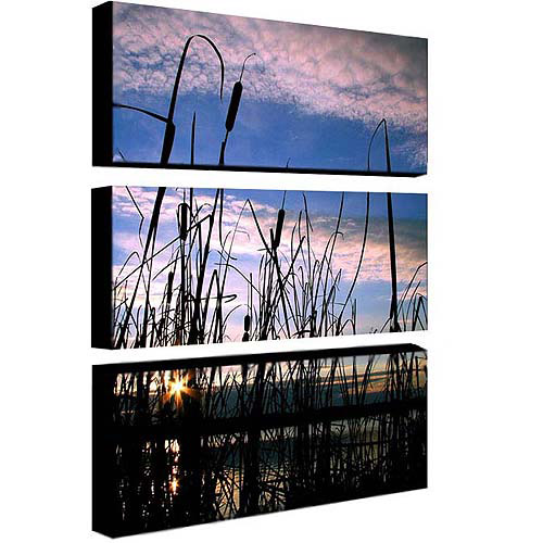 "Trademark Art ""Dreams"" Canvas Art by CATeyes, 3-Piece Panel Set, 10x24"