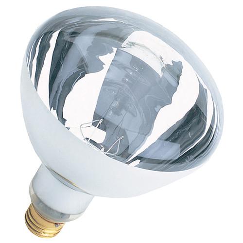 FeitElectric 120-Volt Incandescent Light Bulb (Set of 12)