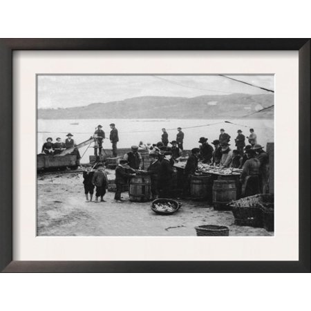 Donegal Fish, Ireland Framed Art Print Wall Art  - -
