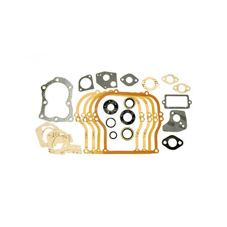 Briggs 495603 Gasket Set with Seals. Fits 5 HP Horizontal Flathead engines.