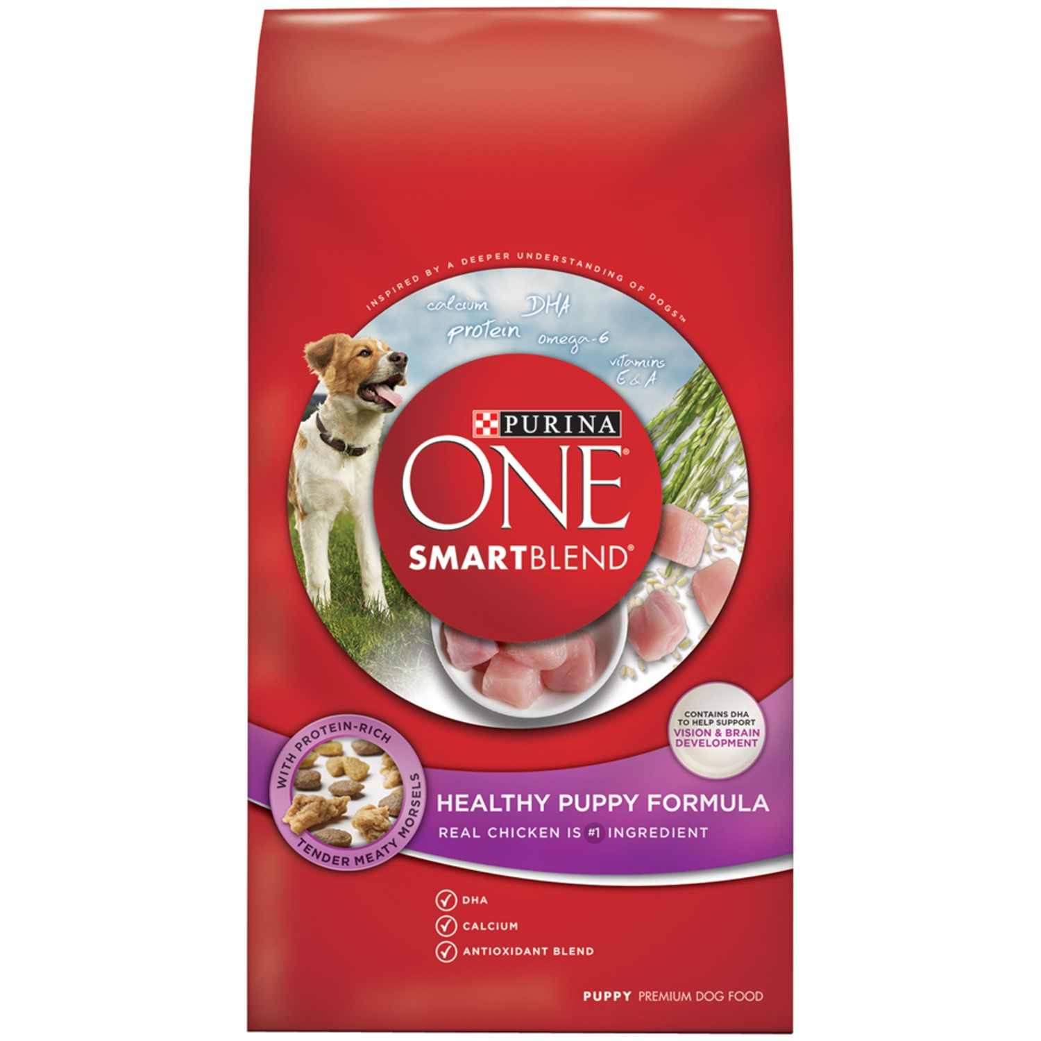 Purina ONE SmartBlend SmartBlend Healthy Puppy Formula Puppy Dry Dog Food, 16.5 Lb.