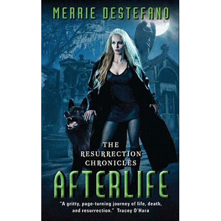 Afterlife - eBook