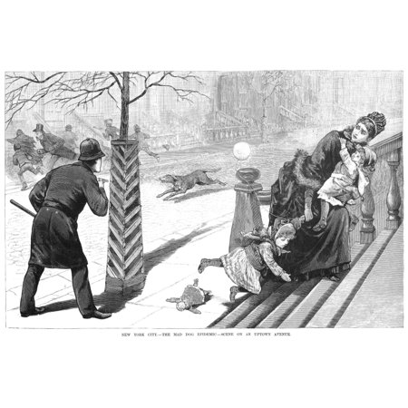 Rabies Epidemic 1886 Nthe Mad Dog Epidemic Scene On An Uptown Avenue In New York City January 1886 Wood Engraving From A Contemporary American Newspaper Rolled Canvas Art -  (24 x 36) New Mad Dog