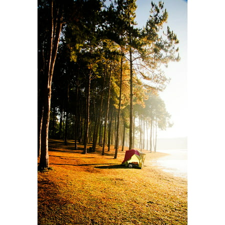 Framed Art for Your Wall Tent Adventure Camping Vacation Tree Forest 10x13  Frame