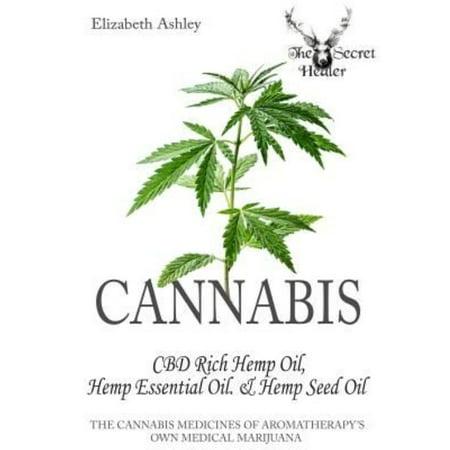 Cannabis  High Cbd Hemp  Hemp Essential Oil And Hemp Seed Oil  The Cannabis Medicines Of Aromatherapys Own Medical Marijuana