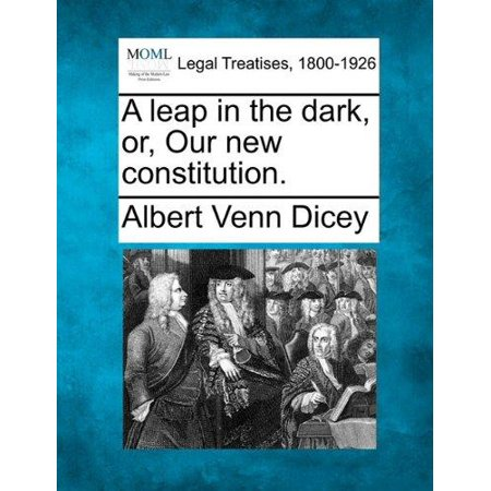 A Leap In The Dark  Or  Our New Constitution