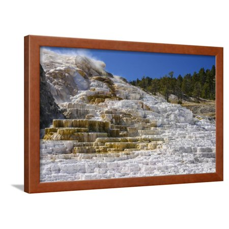 Terrace Yellowstone Park (Palette Spring, Travertine Terraces, Mammoth Hot Springs, Yellowstone National Park, Wyoming Framed Print Wall Art By Gary Cook )