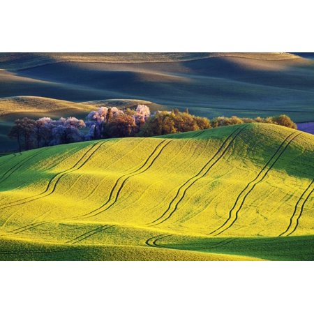 USA, Washington State, Palouse. Rolling Hills Covered by Wheat Fields Print Wall Art By Terry Eggers