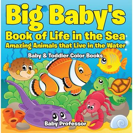 Big Baby's Book of Life in the Sea: Amazing Animals that Live in the Water - Baby & Toddler Color Books - eBook ()
