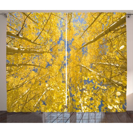 Yellow And Blue Curtains 2 Panels Set  Looking Skyward Amongst The Patch Of Sun Lit Aspen Trees In Autumn Life Print  Window Drapes For Living Room Bedroom  108W X 90L Inches  Yellow  By Ambesonne