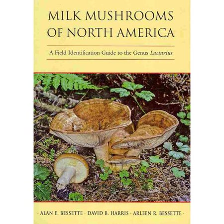 Milk Mushrooms Of North America  A Field Identification Guide To The Genus Lactarius
