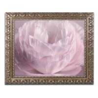Trademark Fine Art 'Persian Pink Petals' Canvas Art by Cora Niele, Gold Ornate Frame