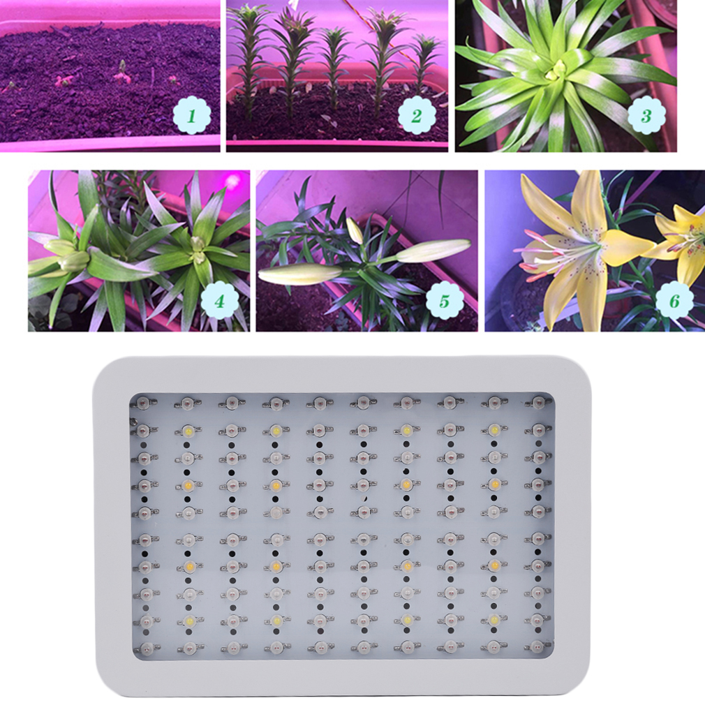 1000W 100 LED Bright Full Spectrum Grow Light for Medical...