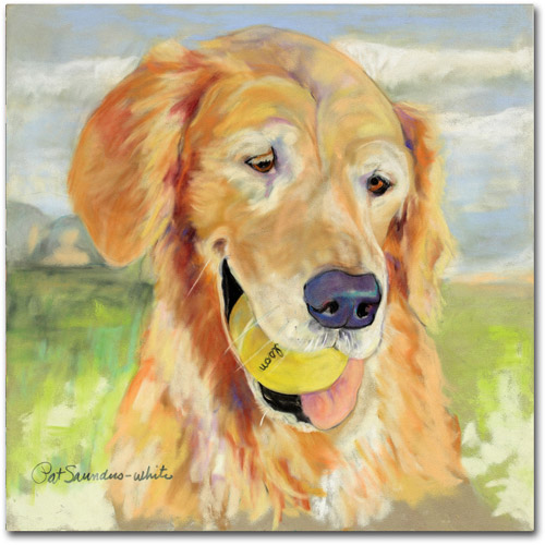 "Trademark Fine Art ""Gus"" Canvas Art by Pat Saunders"