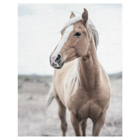 Masterpiece Art Gallery Western Blonde Horse By Chris Dunker Canvas Art Print 22