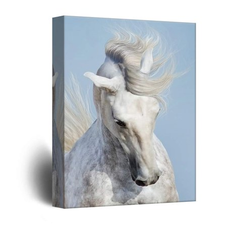Horse Portrait (wall26 - Canvas Wall Art - White Horse Portrait - Giclee Print Gallery Wrap Modern Home Decor Ready to Hang - 32x48)