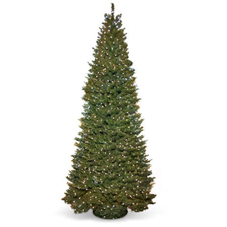 9ft Christmas Tree.Holiday Time 9ft Prelit Pole Fir Tree