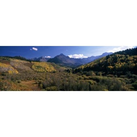 Trees on mountains State Highway 62 Ridgway Colorado USA Canvas Art - Panoramic Images (18 x 6)