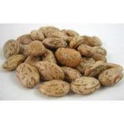 Bulk Peas And Beans Organic 100% Organic Pinto Beans 25 Lb (Pack of 1)