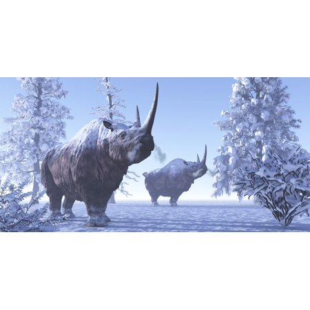 Wooly Rhino - Woolly Rhino males during a snowy winter in the Pleistocene Period Stretched Canvas - Corey FordStocktrek Images (20 x 10)