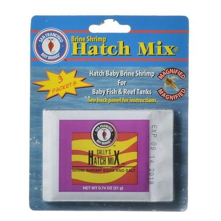 SF Bay Brands Brine Shrimp Hatch Kit .61 oz each (3 (Grade Brine Shrimp)