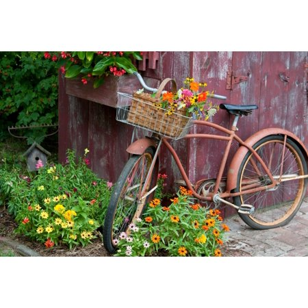 Old bicycle with flower basket next to old outhouse garden shed Marion County Illinois USA Canvas Art - Panoramic Images (24 x 36)