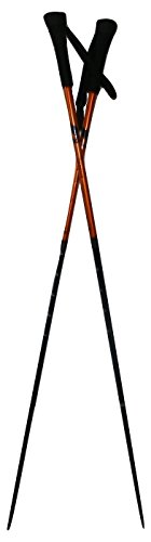 Two Trekker Sunrise Compass Equipped Anti-Shock Telescoping Collapsible Hiking Poles for for Backpacking Trekking... by