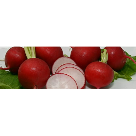 Canvas Print Vegetables Red Frisch Food Healthy Eat Radishes Stretched Canvas 10 x 14